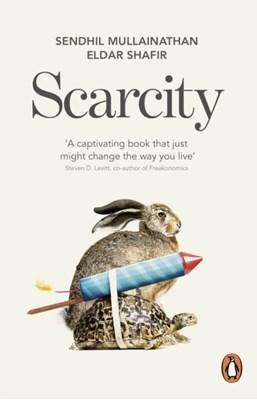 Scarcity Eldar Shafir, Sendhil Mullainathan 9780141049199