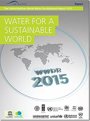 Water for a Sustainable World  9789231000805