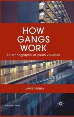 How Gangs Work James Densley, J. Densley 9781137572936
