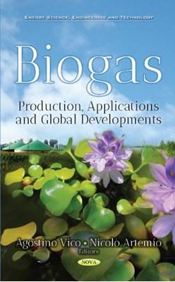 Biogas  9781536127874
