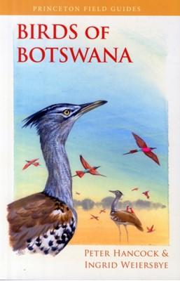 Birds of Botswana Peter Hancock, Ingrid Weiersbye 9780691157177