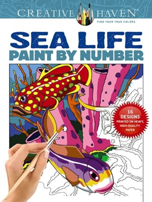 Creative Haven Sea Life Paint by Number George Toufexis 9780486803807