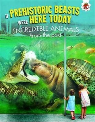 Incredible Animals Matthew Rake 9781910684733