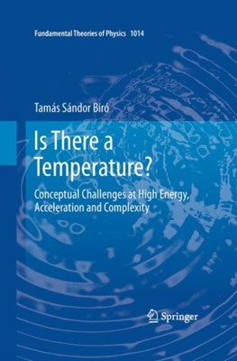 Is There a Temperature? Tamas Sandor Biro 9781441980403