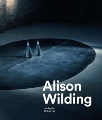 Alison Wilding Jo Applin 9781848222656