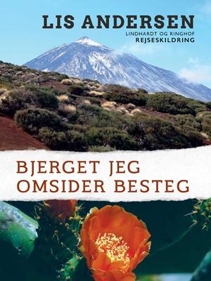 Bjerget jeg omsider besteg Lis Andersen 9788726037012
