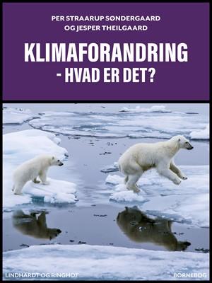 Klimaforandring – hvad er det? Jesper Theilgaard, Per Straarup Søndergaard 9788711707494