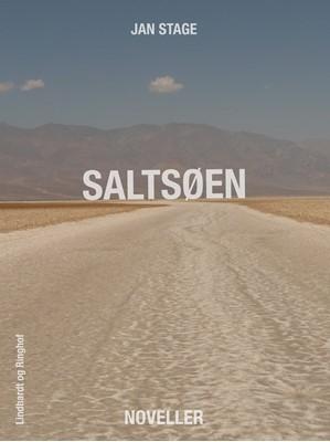 Saltsøen Jan Stage 9788711464373