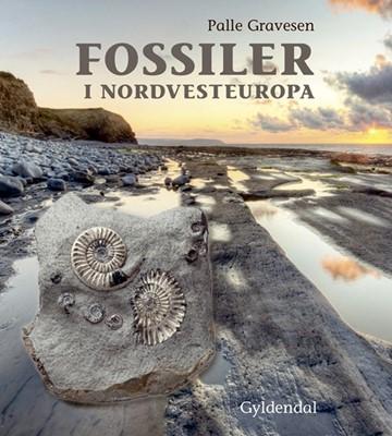 Fossiler i Nordvesteuropa Palle Gravesen 9788702178760