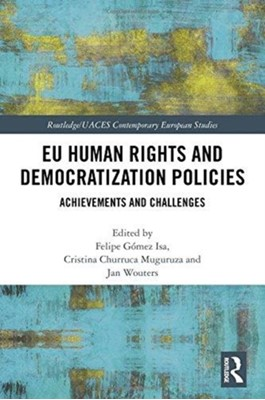 EU Human Rights and Democratization Policies  9781138086869