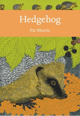 Hedgehog Pat Morris 9780008235734