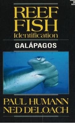 Reef Fish Identification Paul Humann, Ned DeLoach 9781878348357