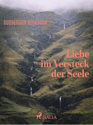 Liebe im Versteck der Seele Gudbergur Bergsson 9788711586297