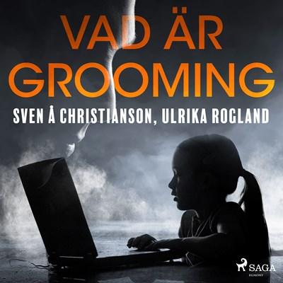 Vad är grooming Ulrika Rogland, Sven Å Christianson 9788711954607