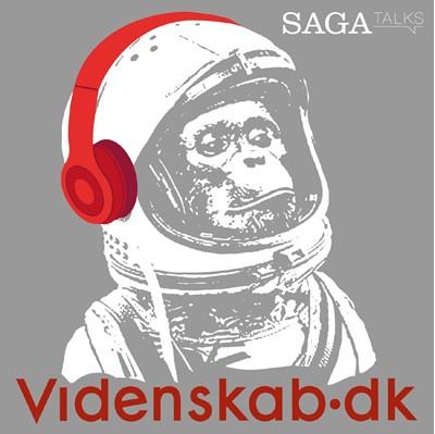 Videnskab.dk #1 - Den største misforståelse om vikingetiden – Videnskab.dk 9788726050073