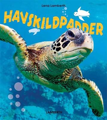 Havskildpadder Lena Lamberth 9788771614688