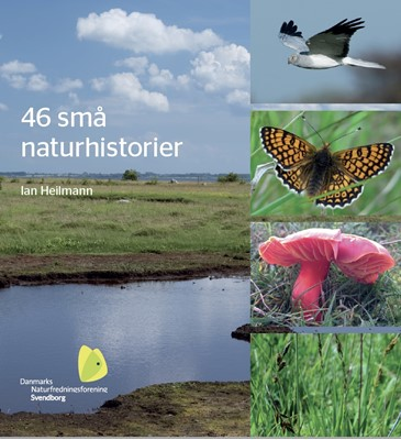 46 små naturhistorier Ian Heilmann 9788793663794