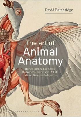 The Art of Animal Anatomy David Bainbridge 9781912217359