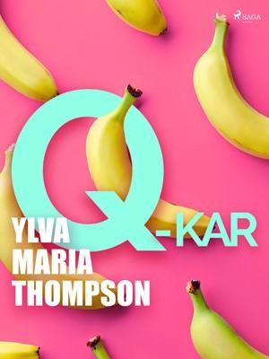 Q-kar Ylva Maria Thompson 9788726002461