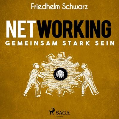 Networking – Gemeinsam stark sein Friedhelm Schwarz 9788726071221