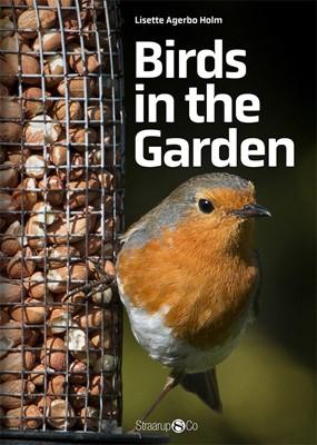 Birds in the Garden Lisette Agerbo Holm 9788770182188
