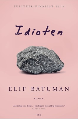 Idioten Elif Batuman 9788740044652