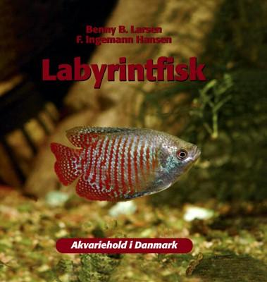 Labyrintfisk F. Ingemann Hansen, Benny B. Larsen 9788778576545