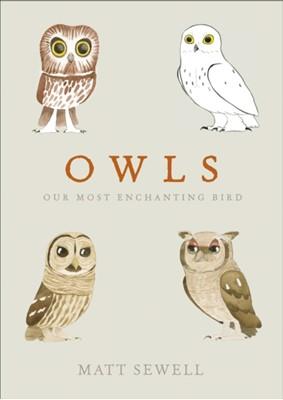 Owls Matt Sewell 9780091959999