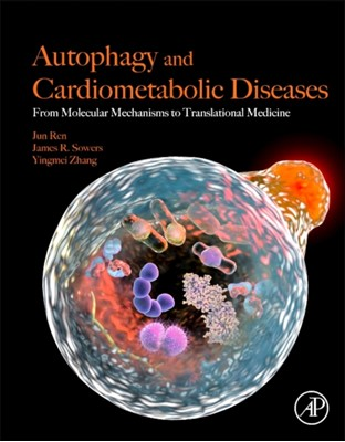 Autophagy and Cardiometabolic Diseases Jun (Associate Dean of Research Ren, Yingmei Zhang, James R. (Professor of Medicine Sowers 9780128052532