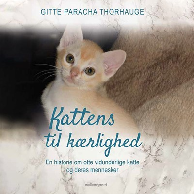 Kattens til kærlighed - En historie om otte vidunderlige katte og deres mennesker Gitte Paracha Thorhauge 9788726141474