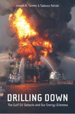 Drilling Down Tadeusz W. Patzek, Joseph A. Tainter 9781441976765
