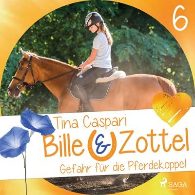 Bille und Zottel 6: Gefahr auf der Pferdekoppel Tina Caspari 9788726082999