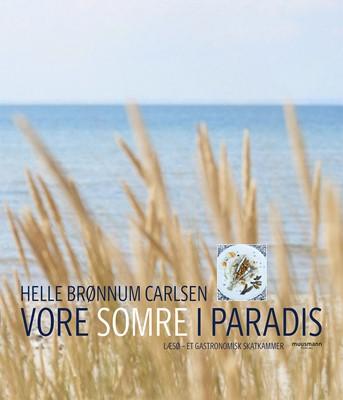 Vore somre i paradis Helle Brønnum Carlsen 9788793679344
