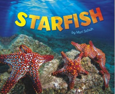 Starfish Mari Schuh 9781474704809