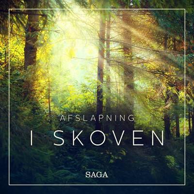 Afslapning - I skoven Rasmus Broe 9788726172089