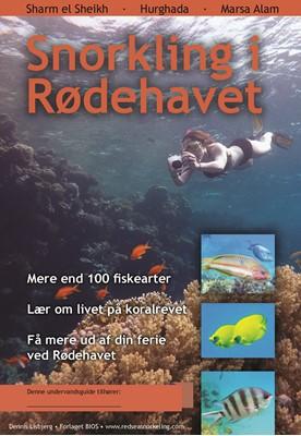 Snorkling i Rødehavet Dennis Lisbjerg 9788770561730