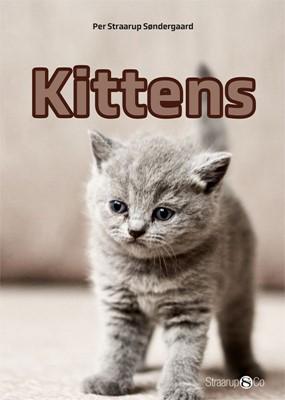 Kittens Per Straarup Søndergaard 9788770182102
