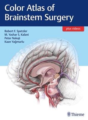 Color Atlas of Brainstem Surgery  9781626230279