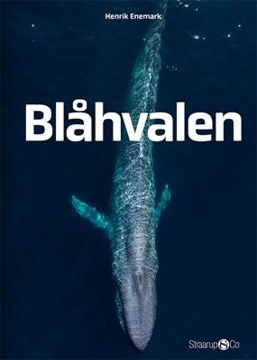Blåhvalen Henrik Enemark 9788770183789