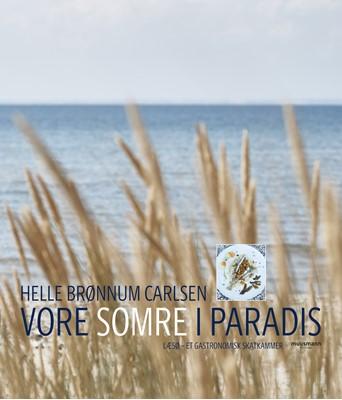 Vore somre i paradis Helle Brønnum Carlsen 9788793867314