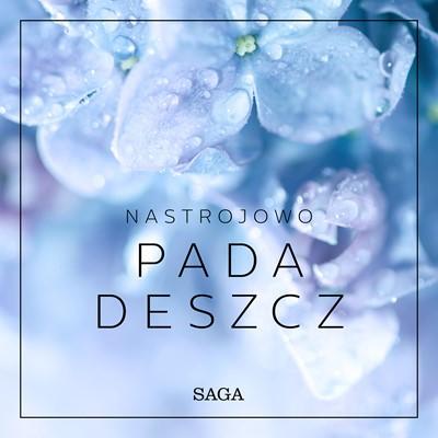 Nastrojowo - Pada deszcz Rasmus Broe 9788726266733
