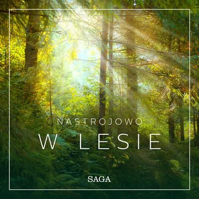 Nastrojowo - W lesie Rasmus Broe 9788726266726