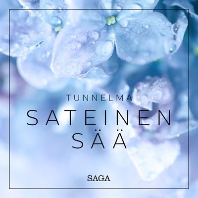 Tunnelma - Sateinen sää Rasmus Broe 9788726266061