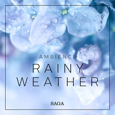 Ambience - Rainy Weather Rasmus Broe 9788726258516