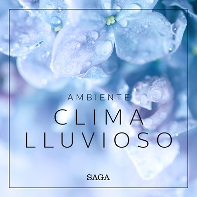 Ambiente - Clima lluvioso Rasmus Broe 9788726266535