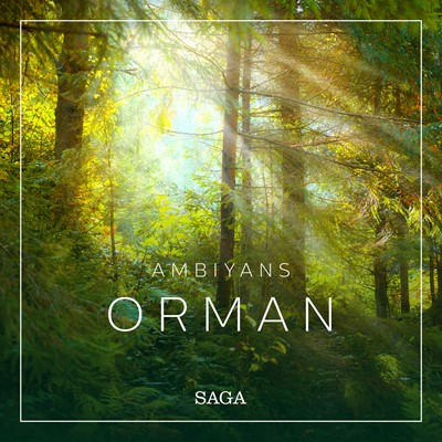 Ambiyans - Orman Rasmus Broe 9788726266573