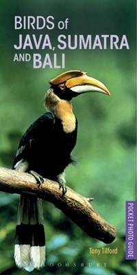 Birds of Java, Sumatra and Bali Tony Tilford 9781472938183