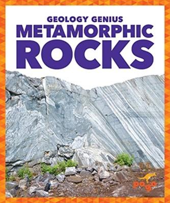Metamorphic Rocks Rebecca Pettiford 9781624968365