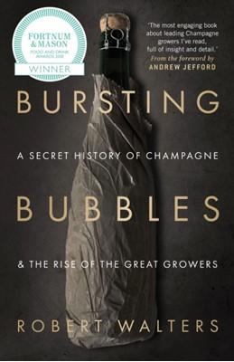 Bursting Bubbles Robert Walters 9781846892790