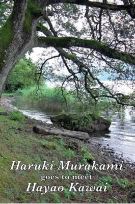 Haruki Murakami Goes to Meet Hayao Kawai Haruki Murakami, Hayao Kawai 9783856307646